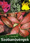 Kedvenc szobanövények