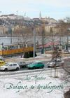Budapest, te újraélesztettél